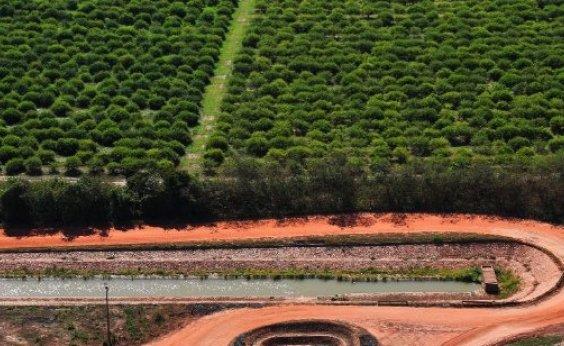 [Ministério da Agricultura pagará R$ 28,9 mi para agricultores cobrirem perdas com secas]