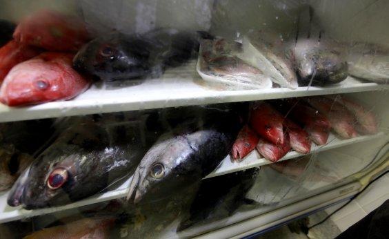 [Análise aponta que pescado está próprio para consumo após contaminação por óleo na Bahia]