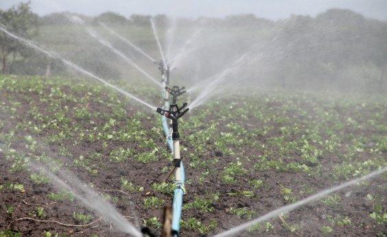 [Governo autoriza ocupação de produtores em polo de irrigação na Bahia]