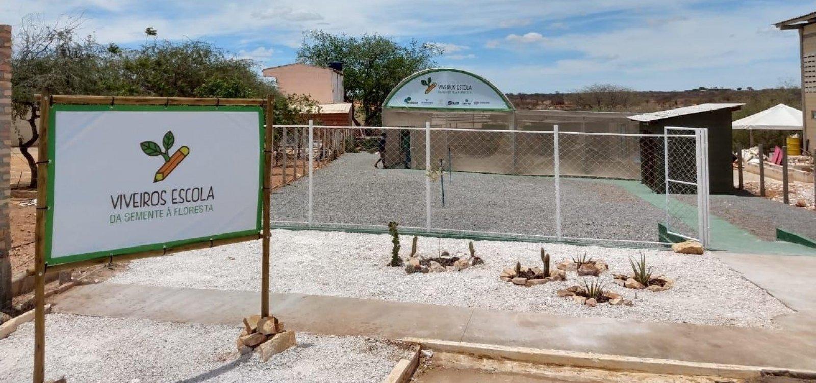 [Ourolândia: Viveiro-escola é inaugurado após acordo com MP-BA]