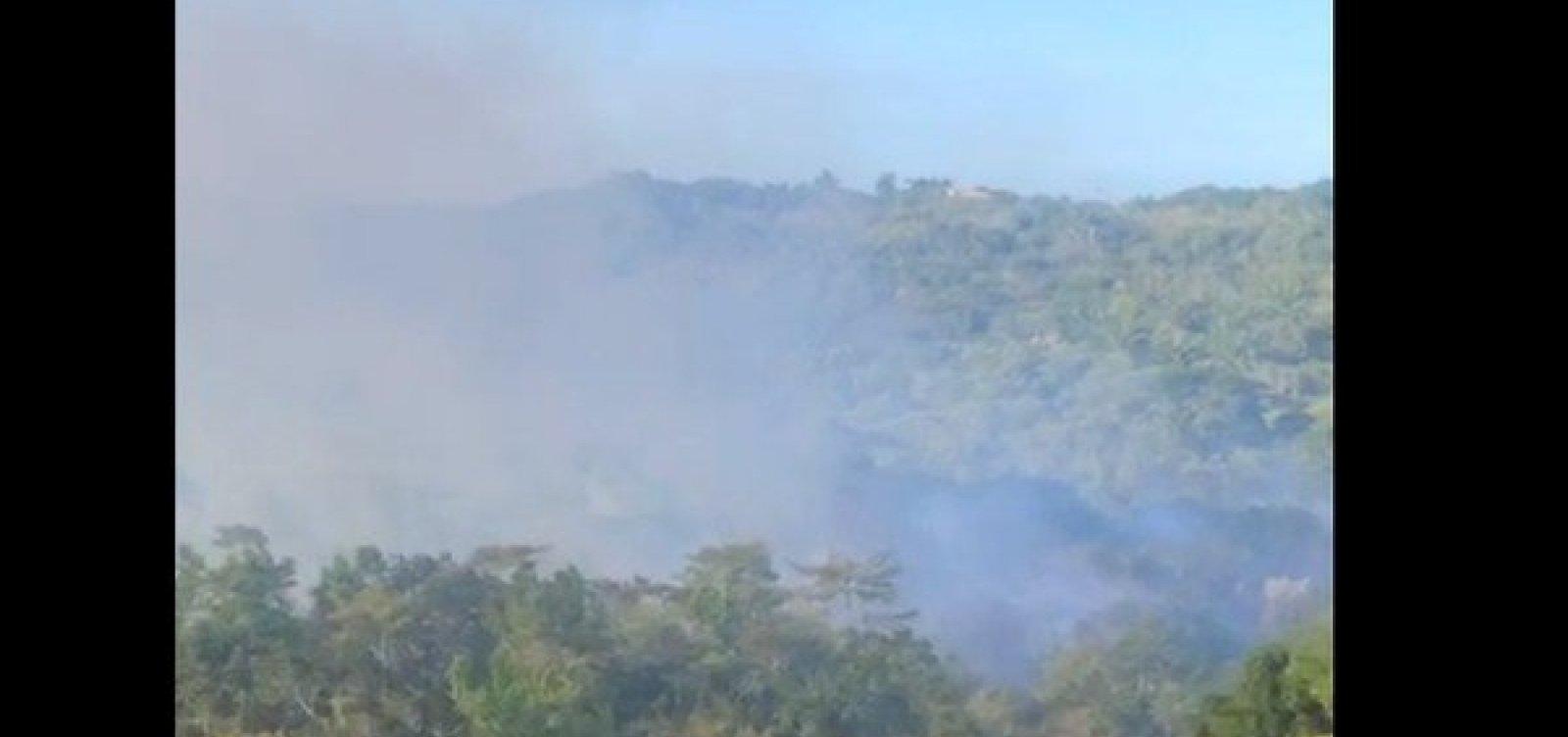 [Incêndio atinge vegetação em Trancoso, no sul da Bahia]