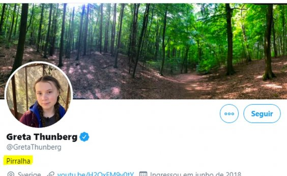 [Após declaração de Bolsonaro, ativista Greta Thunberg muda descrição no Twitter para 'pirralha']
