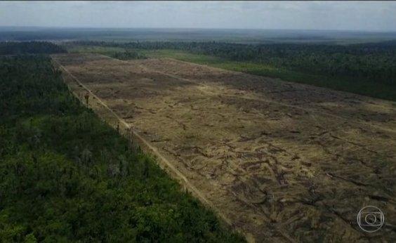 [Área sob alerta de desmatamento na Amazônia no mês de novembro aumenta 103,7%, aponta Inpe]