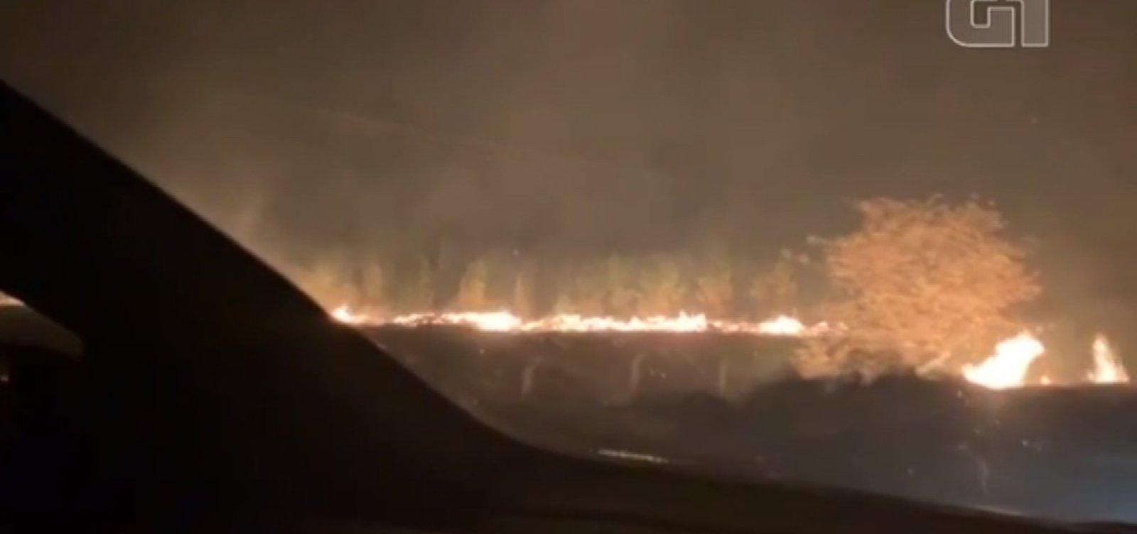 [Incêndio atinge plantação de eucaliptos em Barra do Choça, na Bahia]