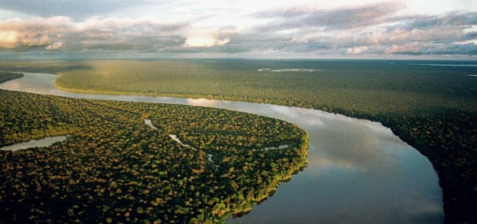 [Ministério do Meio Ambiente vai criar Secretaria da Amazônia]