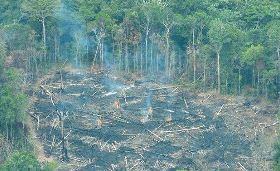 [Alemanha descarta liberação de verba para Amazônia]