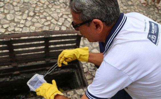 [Agentes de endemias intensificam ações de combate ao Aedes em bairros prioritários da capital]