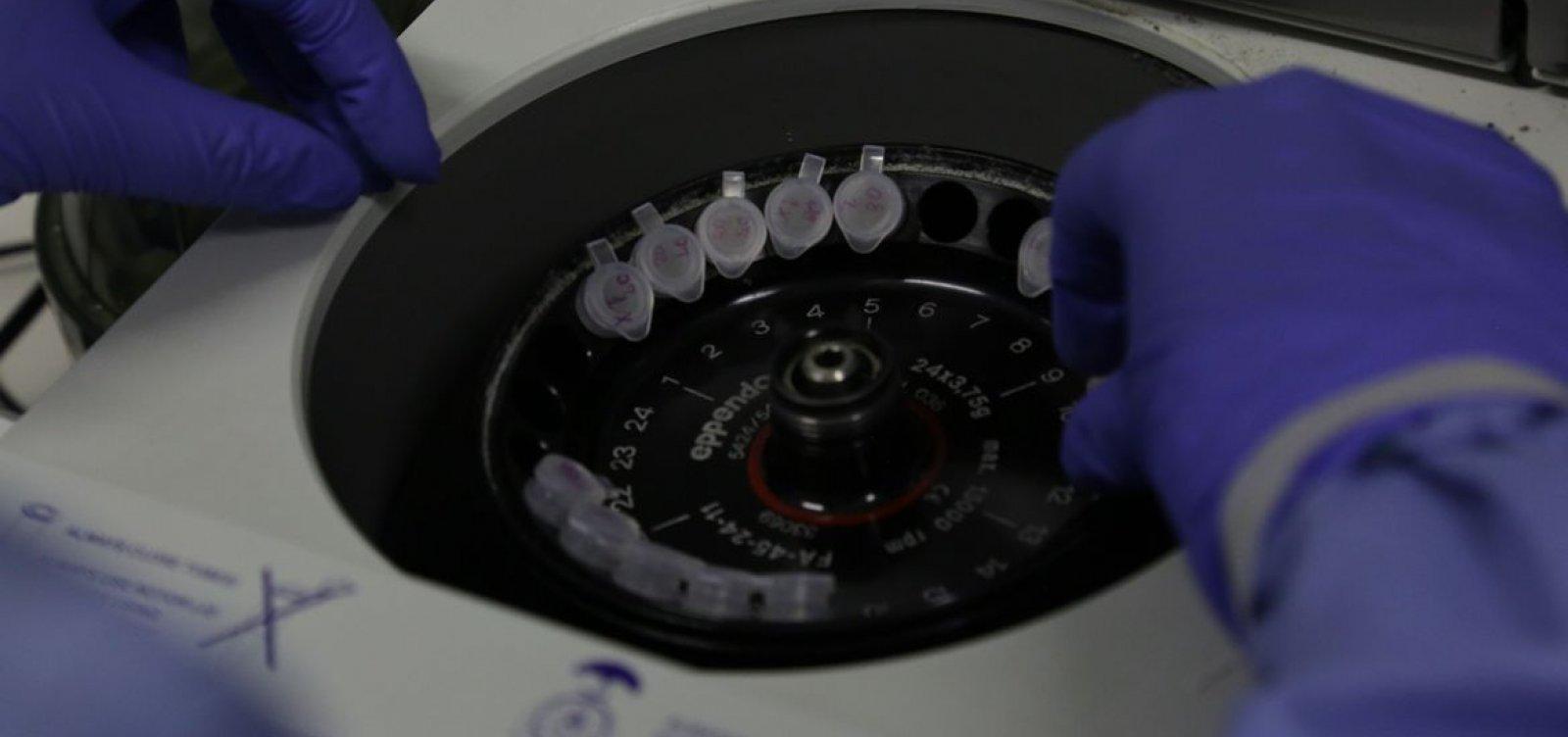 [Cientistas britânicos começam a testar vacina para o coronavírus em ratos]