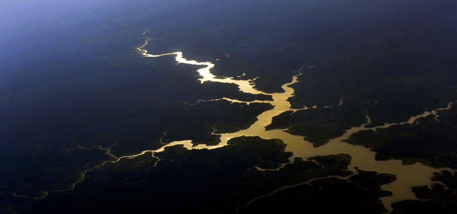 [Governo destinará R$ 500 milhões para proteger mata nativa da Amazônia]