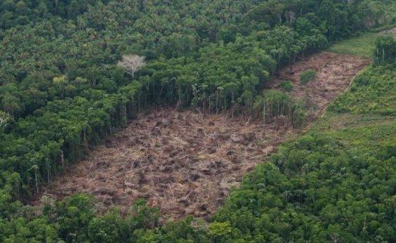[Após Inpe alertar sobre queimadas, governo demite chefe de monitoramento da Amazônia ]