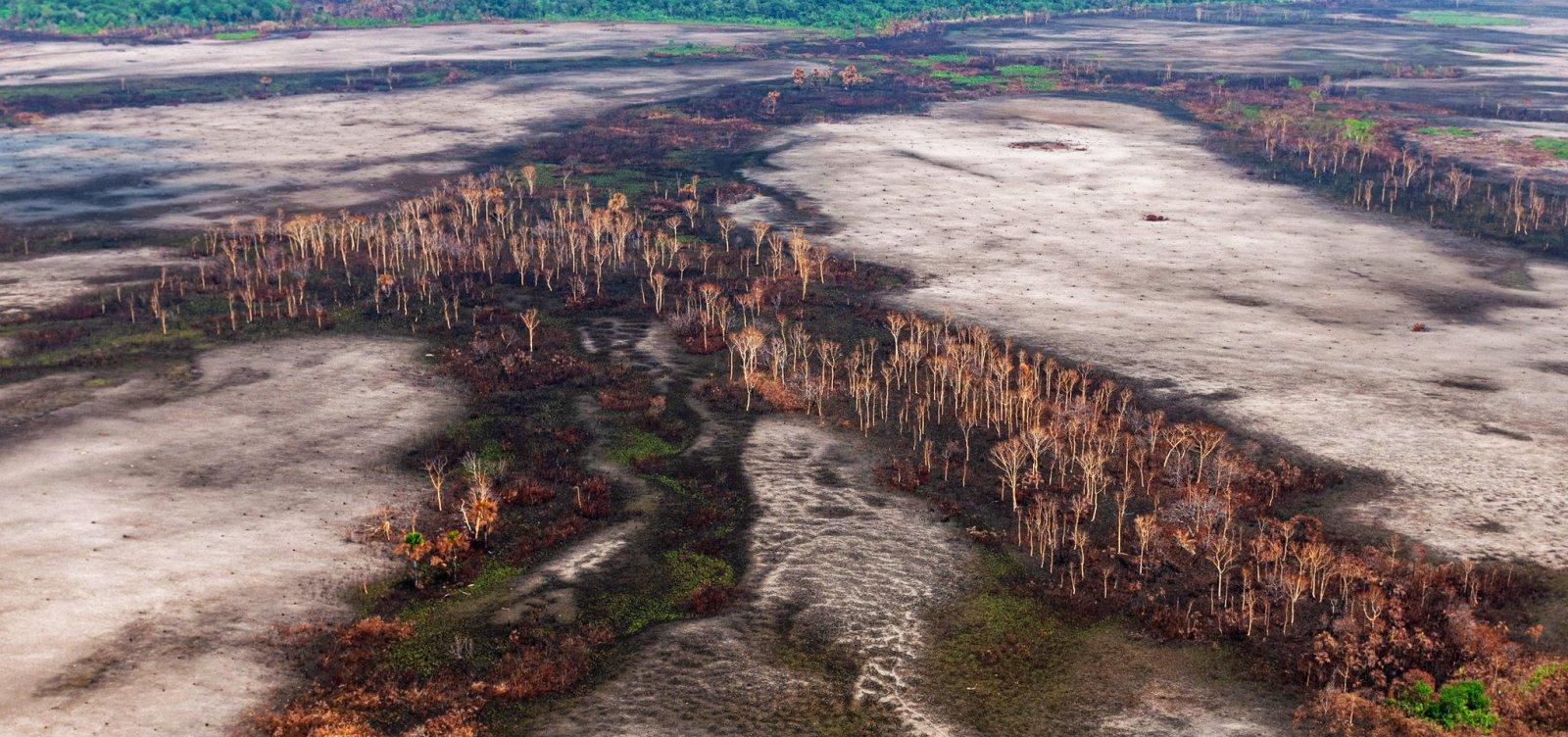 [Ministério do Meio Ambiente quer reduzir meta oficial de preservação da Amazônia]