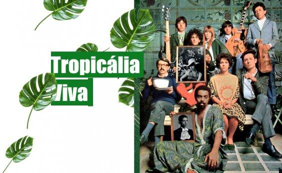 [Após sucesso no Instagram, pesquisador lança site sobre Tropicalismo com área de estudo gratuita]