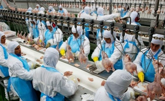 [Filipinas suspendem temporariamente compra de frango do Brasil por medo de coronavírus]