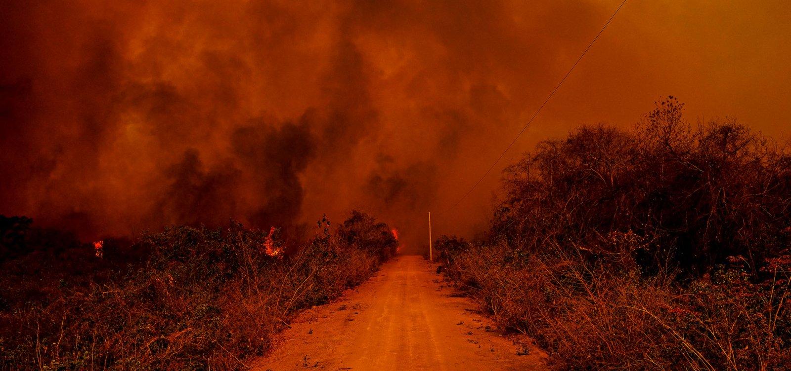 ['Não pode ser acidente', diz delegado da PF sobre incêndios no Pantanal]