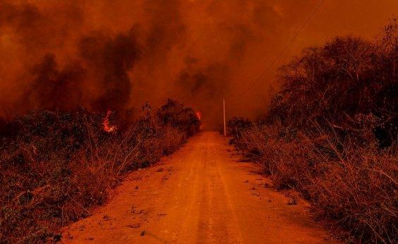 [Vaquinha online arrecada doações para combater queimadas no Pantanal]