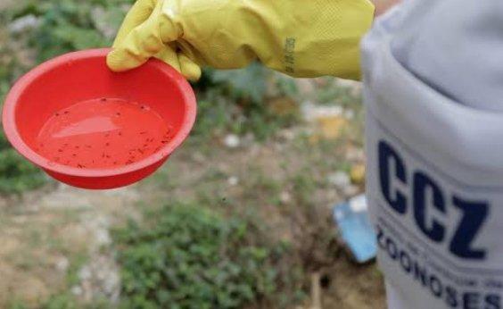 [Bahia registra metade dos casos de chikungunya do Brasil]