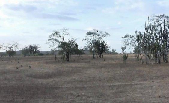 [Bahia registra menor área com seca para o mês de agosto em cinco anos, aponta monitor da ANA]