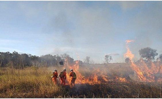 [Bahia registra quase 3 mil focos de queima em 2020, diz Inpe]