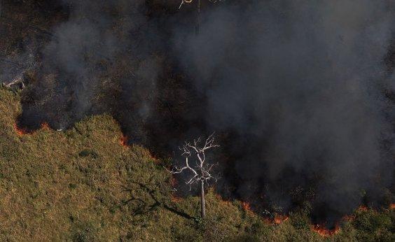 [Governo Bolsonaro usa dados da gestão do PT para se defender de críticas ambientalistas]