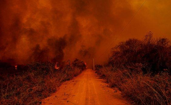 [Pantanal bate recorde de focos de incêndios na história]