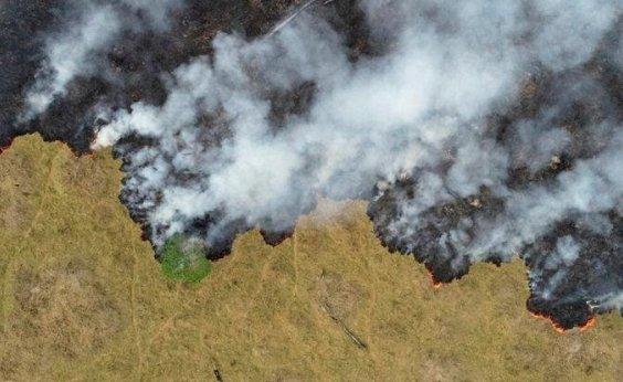 [Em 18 anos, Brasil perde área de vegetação natural próxima ao tamanho da Bahia, diz IBGE]
