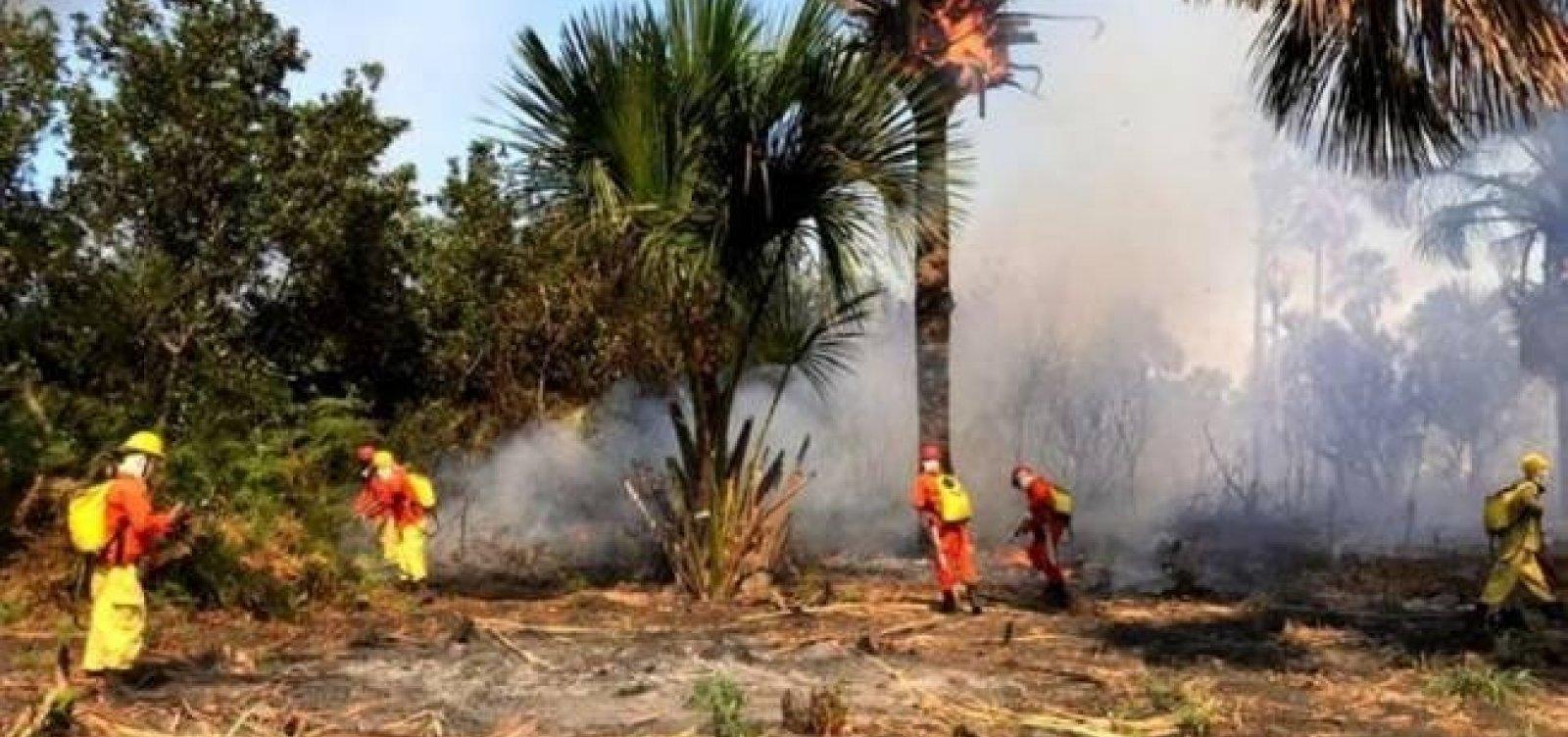 [Fogo no oeste da Bahia se aproxima das casas de moradores; governo envia aviões]