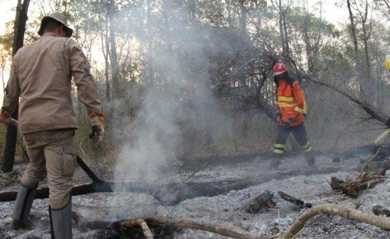 [Investigação da PF aponta que incêndios no Pantanal começaram em 4 fazendas de grande porte no MS]