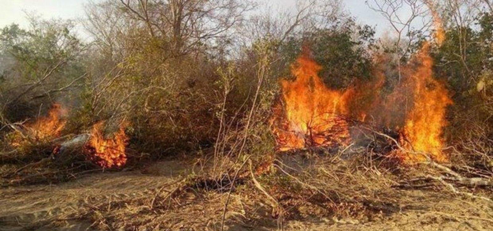 [Incêndio atinge novos povoados em Barra; famílias precisaram sair de casa ]
