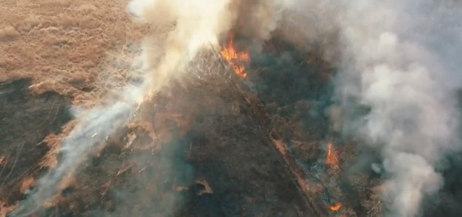 [Incêndio destrói 90 hectares de vegetação no sudoeste da Bahia ]