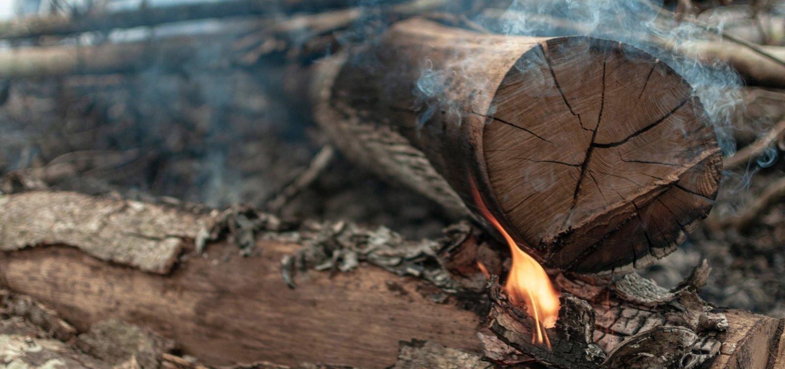 [Ibama gastou menos de 40% do orçamento para combate a desmatamento e queimadas em 2020]