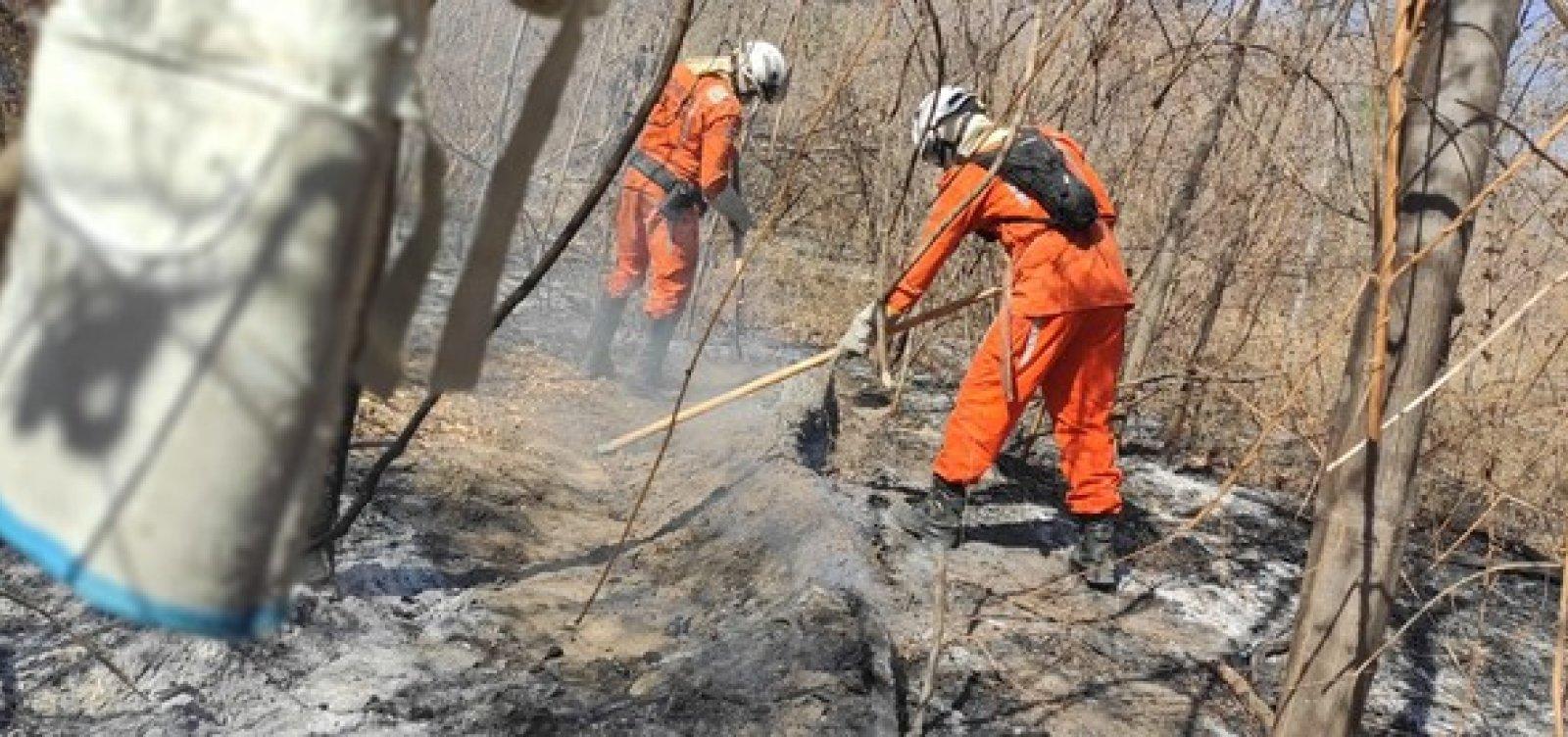 [Após quase um mês do início das chamas, incêndio florestal em Barra é extinto]