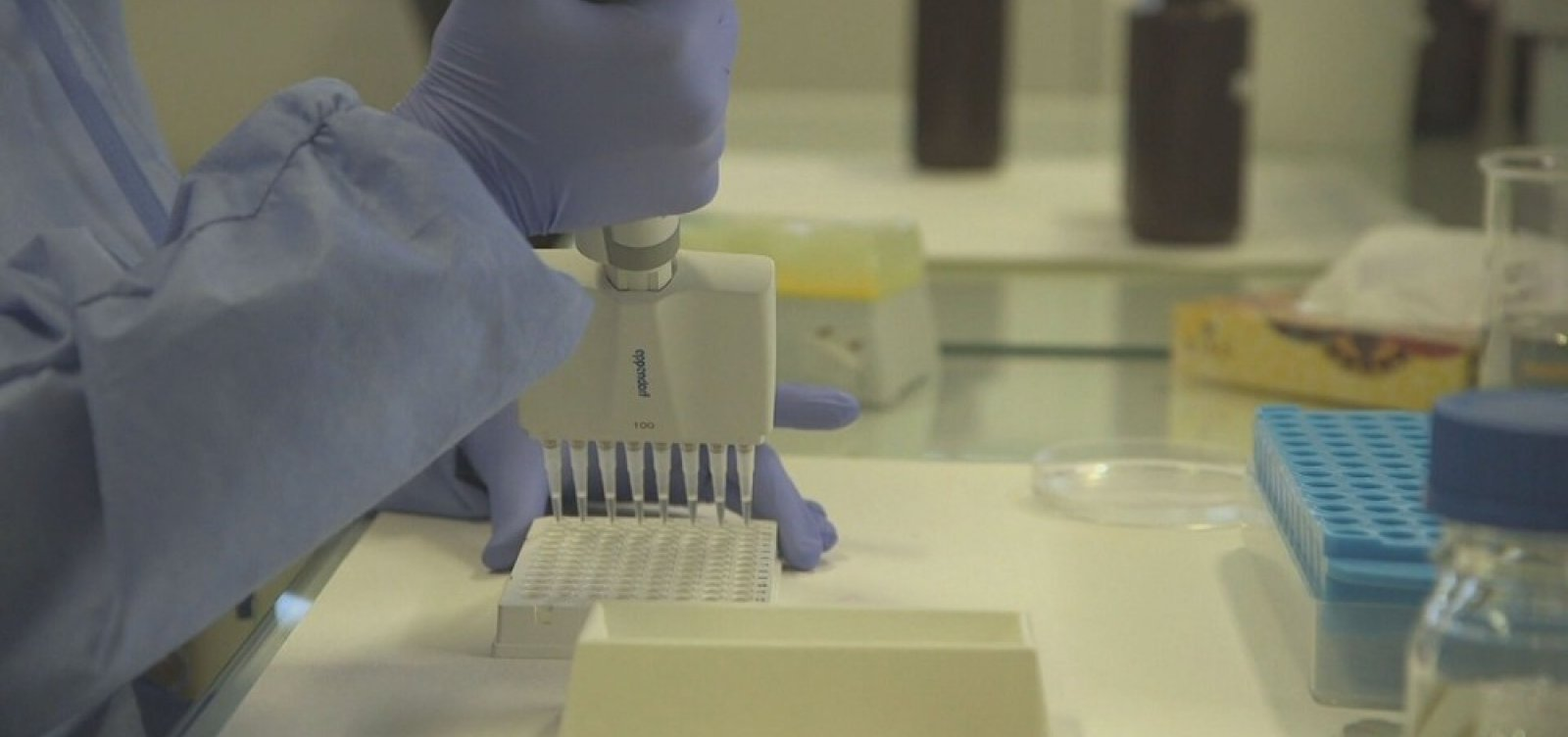 [Estudo que confirma 1º caso de reinfecção por coronavírus nos EUA é publicado]