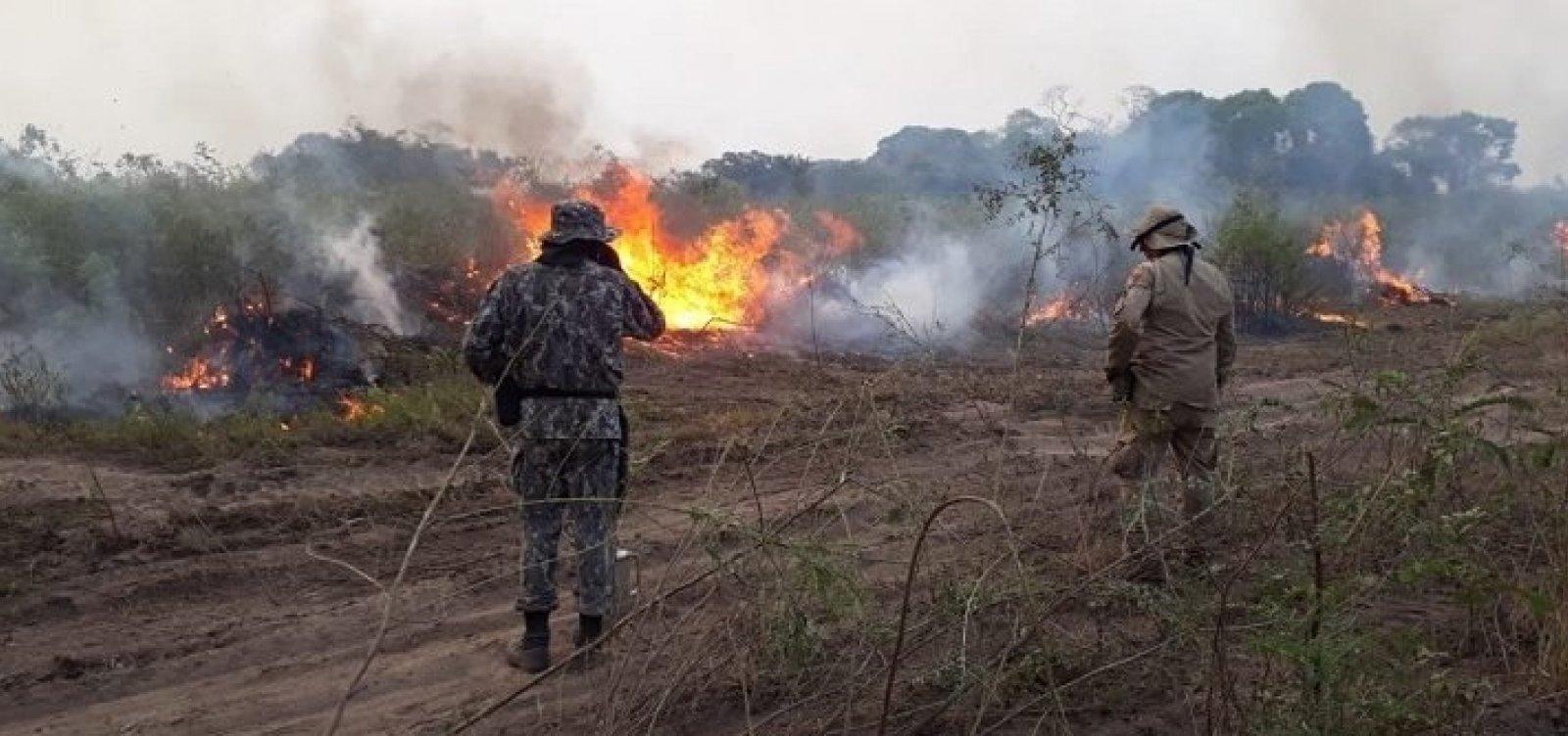 [Pantanal registra 2,5 mil focos de incêndio em 14 dias e já tem o segundo pior outubro da história]