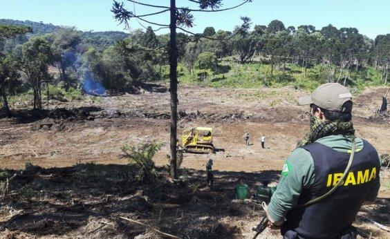 [Ibama determina que brigadas de combate a incêndio retornem às atividades]
