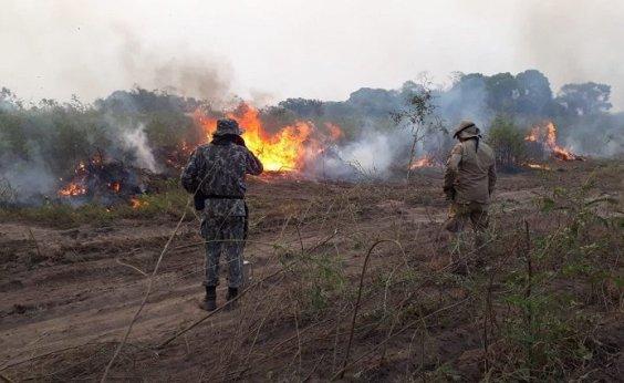 [Pantanal registra 2.825 pontos de incêndio e tem pior outubro da história, diz Inpe]