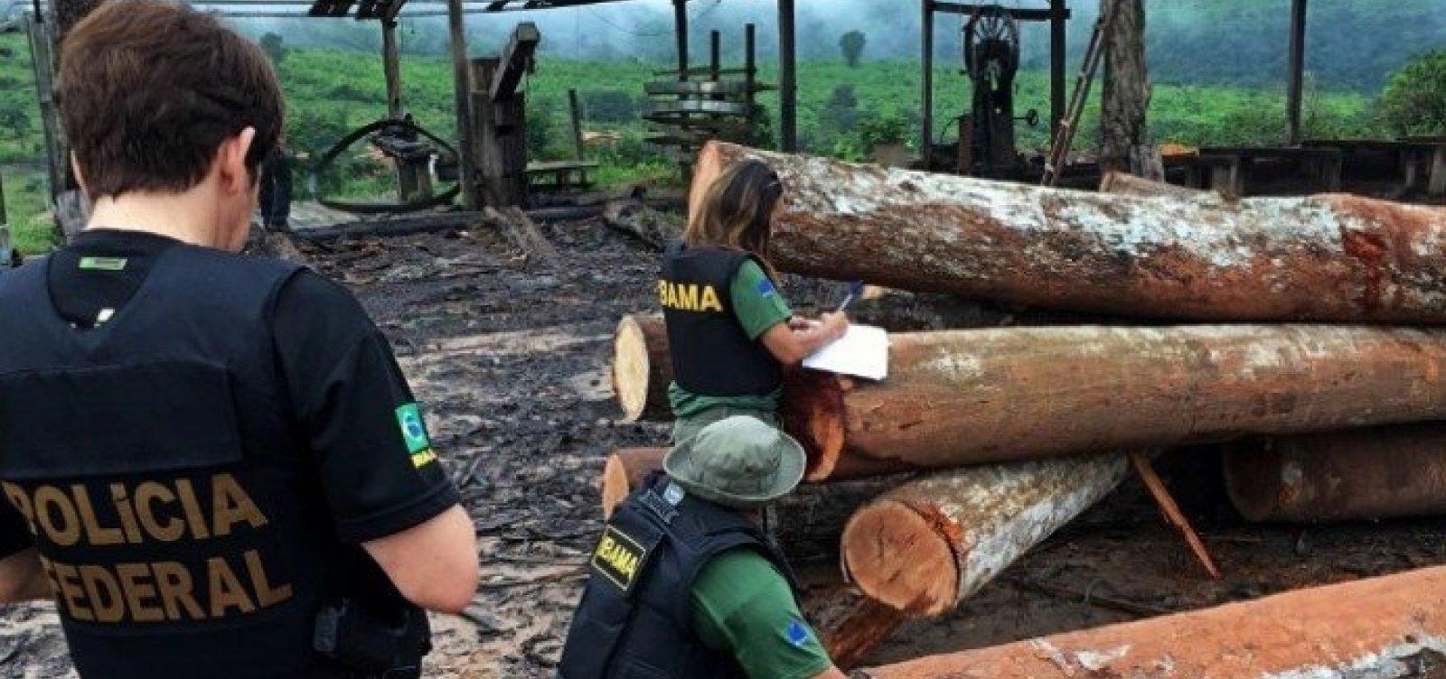 [Ações da PF indicam que Alemanha e França compraram madeira ilegal do Brasil, diz jornal ]